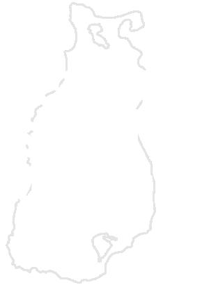 Beaver Island Trails